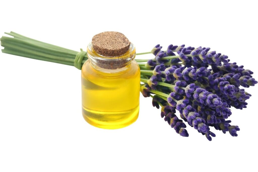 5 Essential Oils to use in Massage Therapy